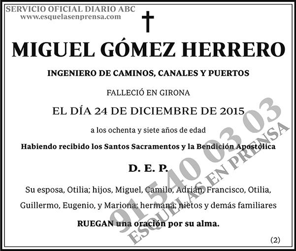 Miguel Gómez Herrero